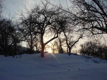 iarna_foto_Adrian Pop_7