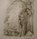 desen de Virgil Tomulet_2