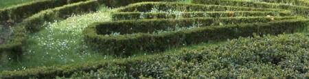 Foto_Amza Jucan_Herculane_crop