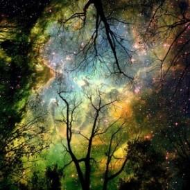 Frumosul_natural_si_frumosul_spiritual