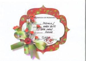 pr. Radu Botis_diploma