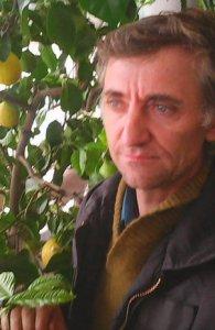 Vasile Dan Marchis_a