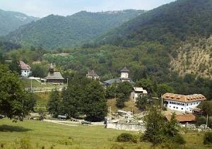 manastirea-topolnita