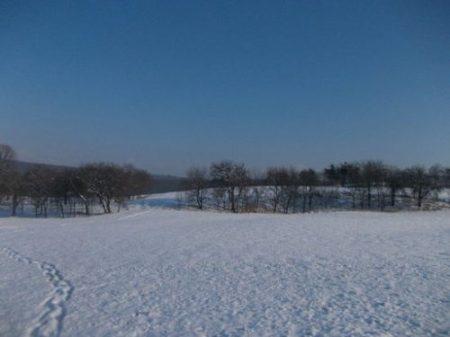iarna-ca-iarna_foto_livia-grigor