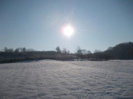 iarna_foto_livia-grigor