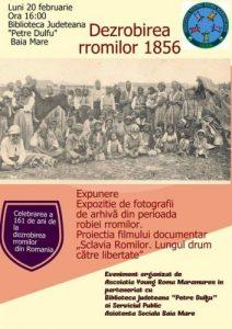 afis_dezrobirea-romilor