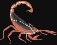constelatia Scorpionului