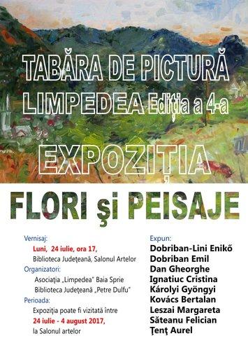 expozitia Flori si peisaje_Tabara Limpedea_2017